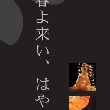 """Exhibition """"Japon"""""""